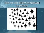 how can leaf lengths be displayed graphically