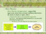 theoretical perspectives6