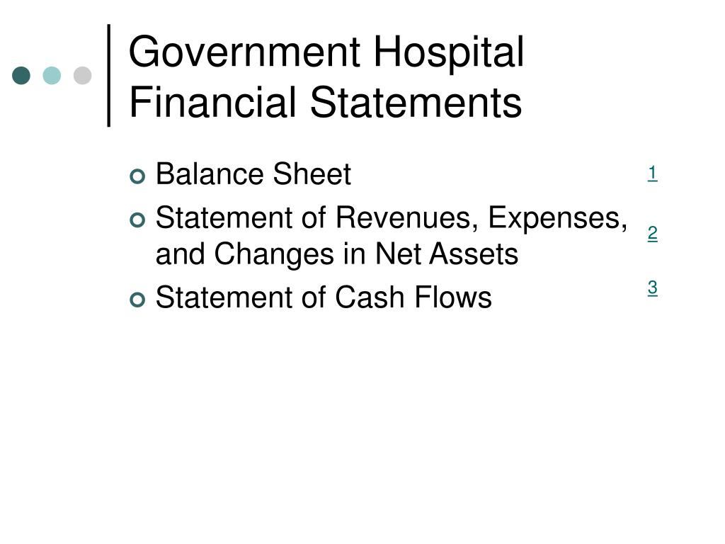 Government Hospital Financial Statements