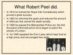 what robert peel did