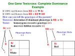 one gene testcross complete dominance example