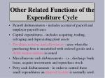 other related functions of the expenditure cycle