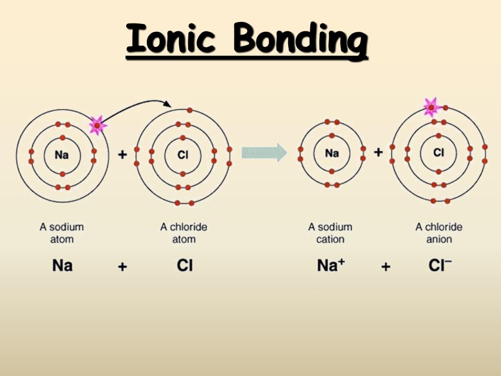 ionic bonding l.
