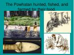 the powhatan hunted fished and farmed for their food