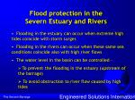 flood protection in the severn estuary and rivers