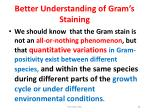 better understanding of gram s staining