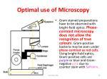 optimal use of microscopy