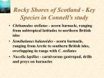 rocky shores of scotland key species in connell s study