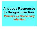 antibody responses to dengue infection primary vs secondary infection
