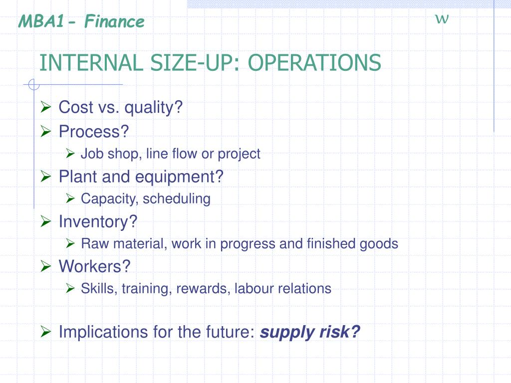 INTERNAL SIZE-UP: OPERATIONS