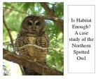 is habitat enough a case study of the northern spotted owl