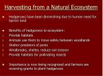 harvesting from a natural ecosystem11