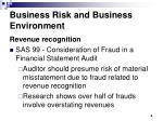business risk and business environment
