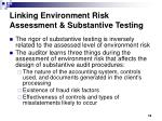 linking environment risk assessment substantive testing