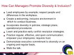 how can managers promote diversity inclusion