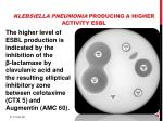klebsiella pneumonia producing a higher activity esbl