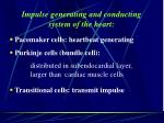 impulse generating and conducting system of the heart