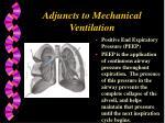 adjuncts to mechanical ventilation
