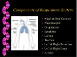 components of respiratory system