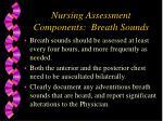nursing assessment components breath sounds