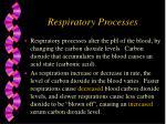 respiratory processes