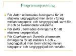 programanpassning
