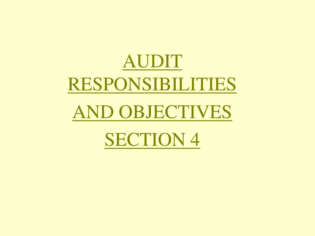 audit responsibilities and objectives section 4 l.