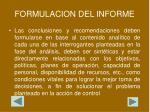 formulacion del informe