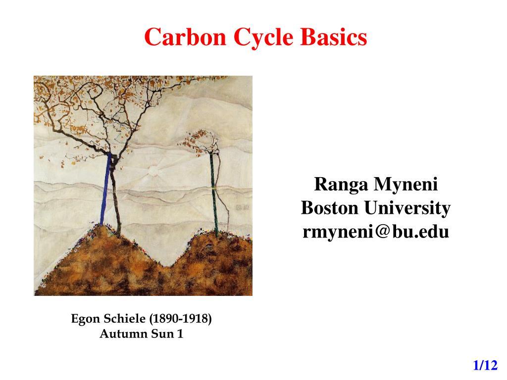 carbon cycle basics l.