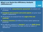 what is an socio eco efficiency analysis seebalance