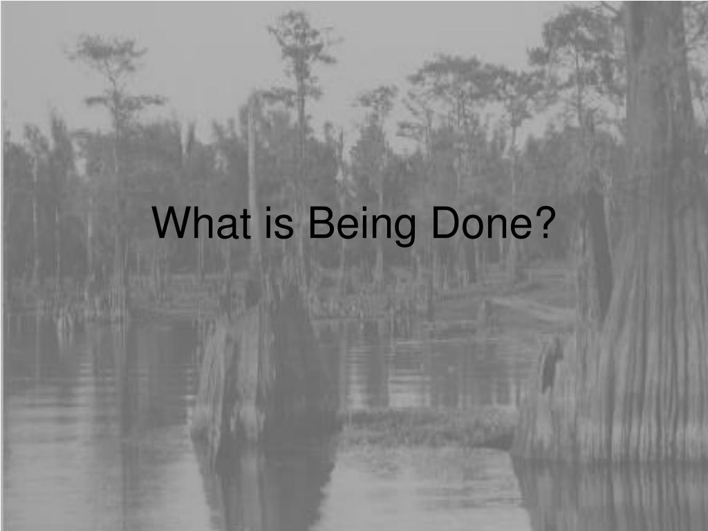 What is Being Done?