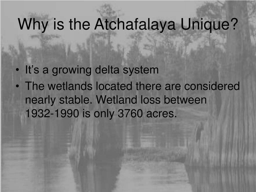 Why is the Atchafalaya Unique?