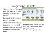 categorizing the role