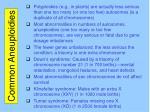 common aneuploidies