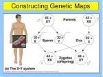 constructing genetic maps12