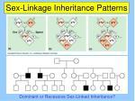 sex linkage inheritance patterns