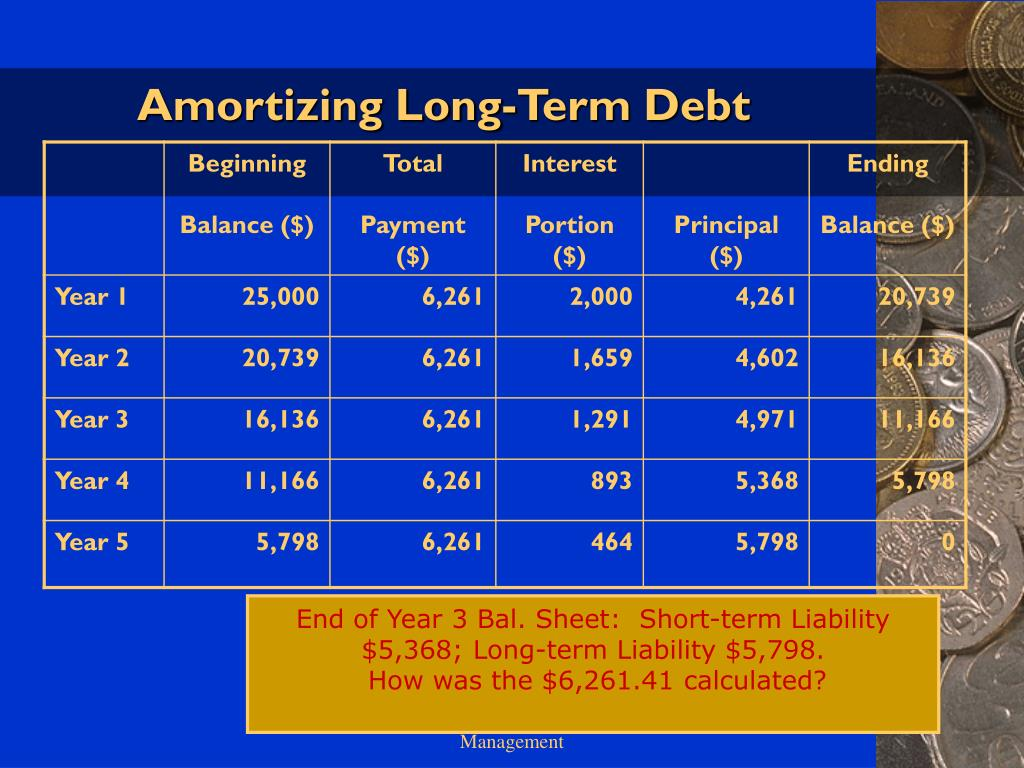 Amortizing Long-Term Debt