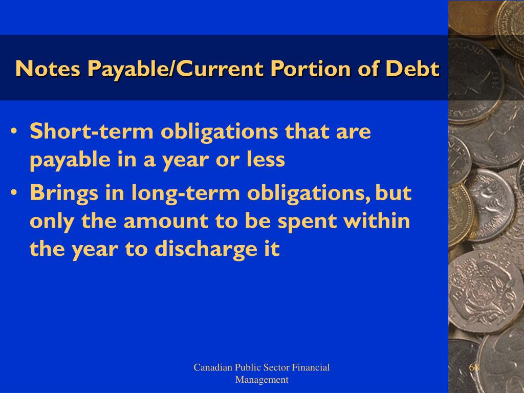 Notes Payable/Current Portion of Debt