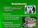 endothermy