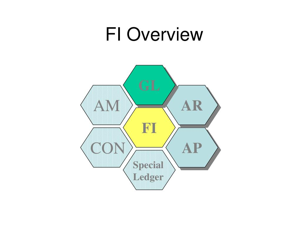 fi overview l.