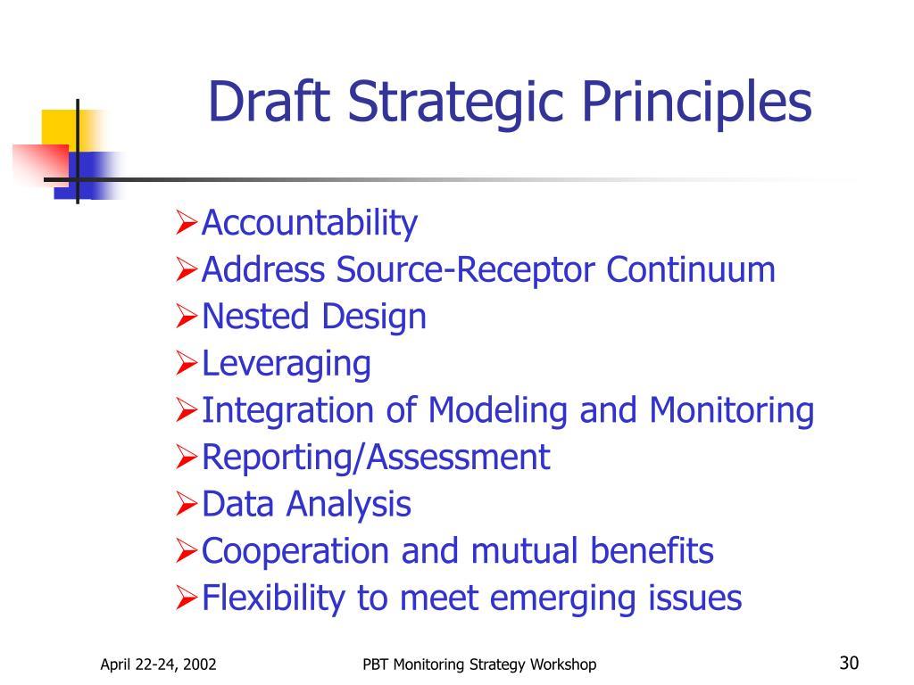 Draft Strategic Principles