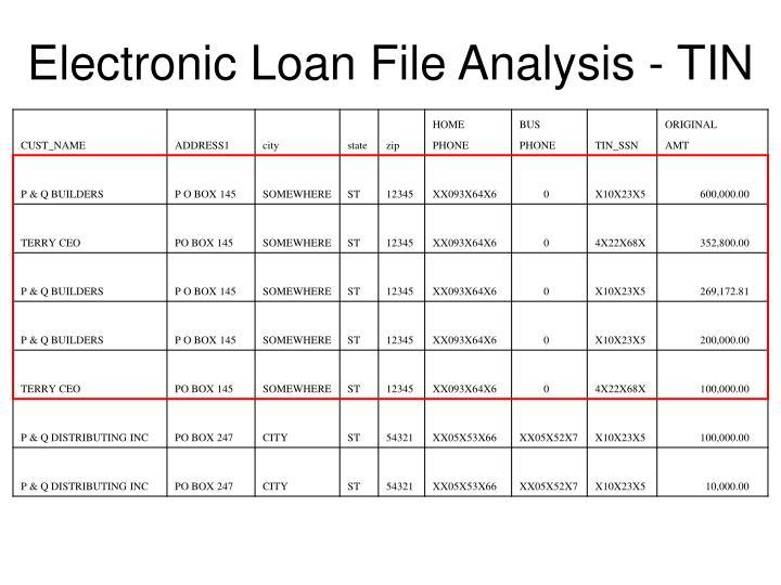 Electronic Loan File Analysis - TIN