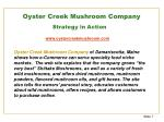 oyster creek mushroom company