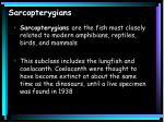 sarcopterygians