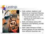 landings6