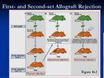 first and second set allograft rejection