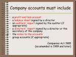 company accounts must include