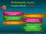 preliminarily assess control risk sales