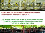 grupo desarrollo de tecnolog as innovadoras para producci n de compuestos bioactivos