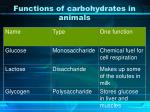 functions of carbohydrates in animals